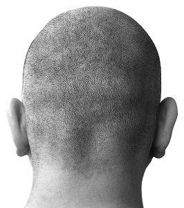Černobílá fotografie mužské oholené hlavy ze zadu