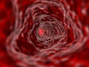 Makro fotka vnitřní stěny tepny