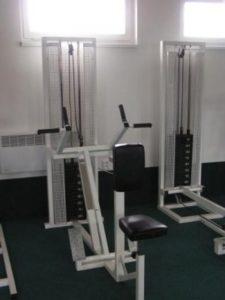 Falcon fitness