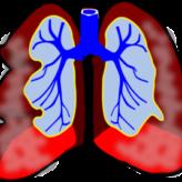 Jak zvládat astmatický záchvat: projevy a první pomoc