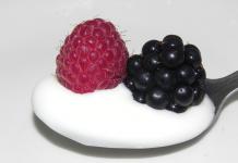 Prošlý jogurt