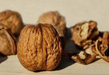 Vlašský ořech - pěstování
