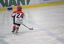 Malý hokejista