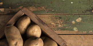 Proč černají brambory