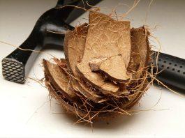 Jak rozbít kokos