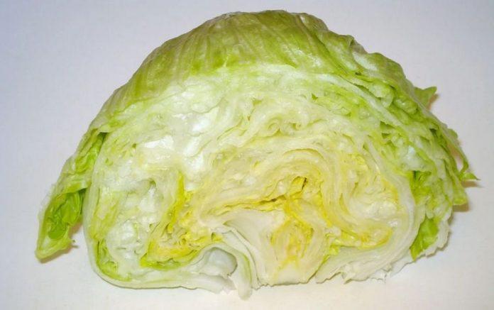 Půlka ledového salátu