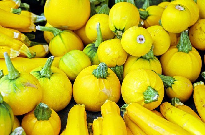 Kulaté žluté cukety