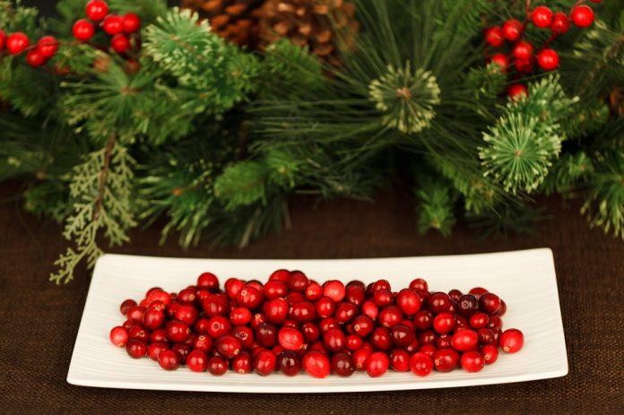 Brusinky a Vánoce